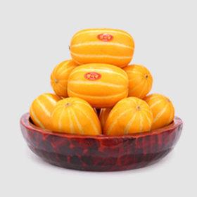 3kg 가정용 중과 성주 꿀맛 참외 당일수확배송