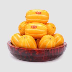 5kg 가정용 중과 성주 꿀맛 참외 당일수확배송