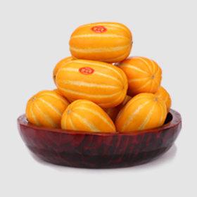 5kg 가정용 대과 성주 꿀맛 참외 당일수확배송