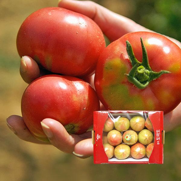 (농협) 경주 이사금 찰토마토 2kg  / 동양종 (SS) 상품이미지