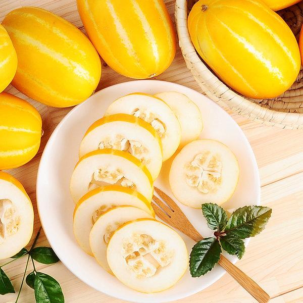 참외/딸기/오렌지/귤/토마토 꿀 참외 10kg (중과) 상품이미지