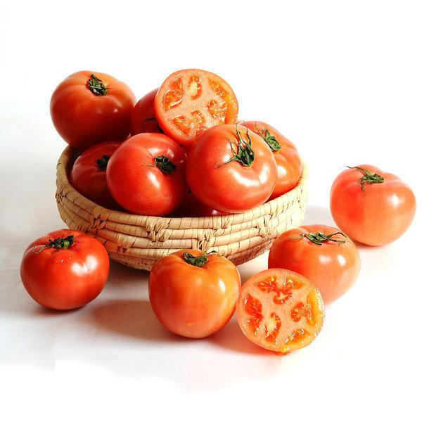 유럽종토마토/오렌지/딸기/키위/과일 완숙토마토 2.5kg 상품이미지