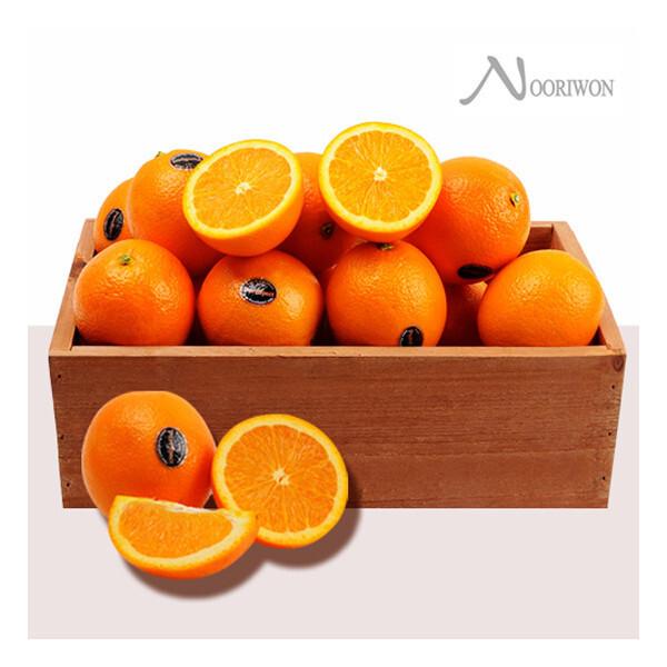 누리원  고당도 퓨어스팩 블랙라벨 오렌지 50과 (중소과) 상품이미지