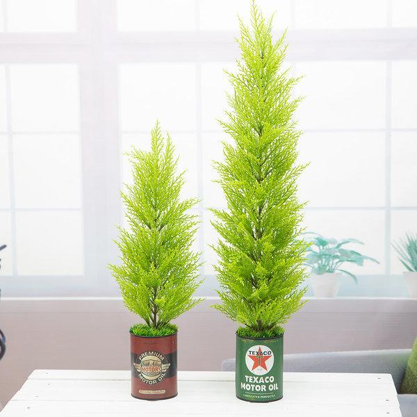 윌마(율마) 나무 빈티지 깡통화분 중 65cm 상품이미지