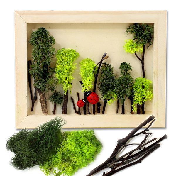 스칸디아모스 나무액자 만들기/diy액자/가을풍경/이끼 상품이미지