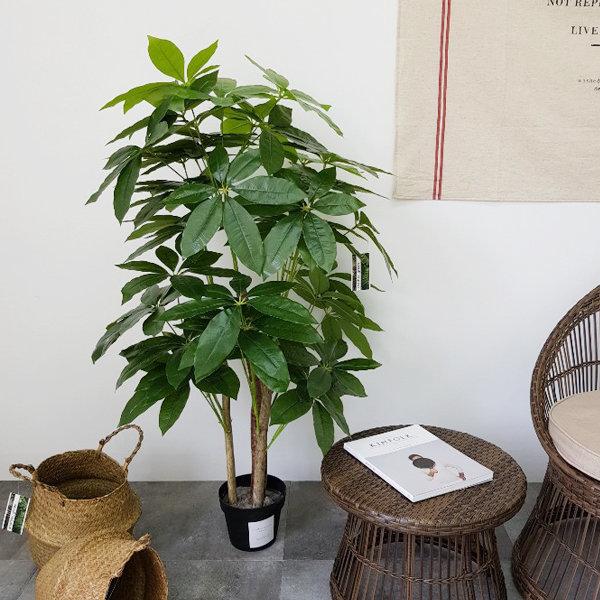 파키라(130cm)조화나무 인조나무 인테리어 플랜테리어 상품이미지