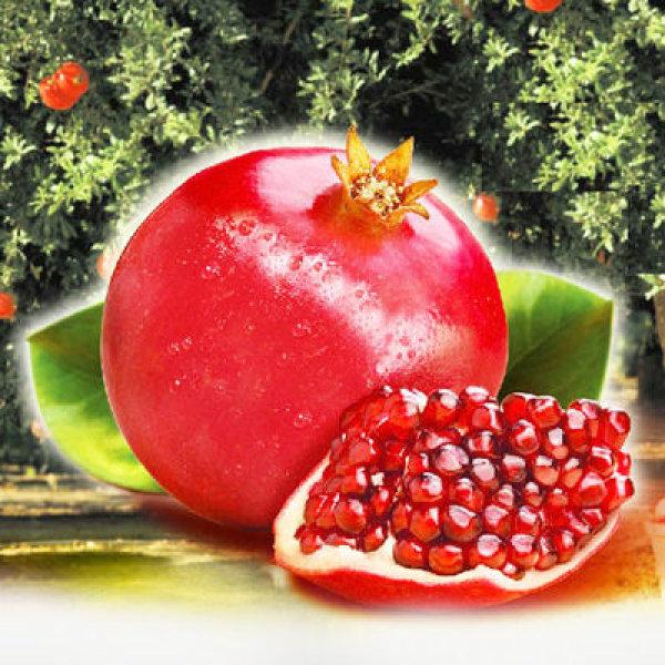 석류3kg 1박스(특품9과-13과)/냉동석류2.5kg 선택구매 상품이미지