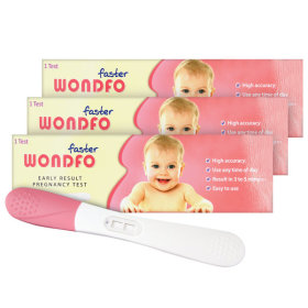 원포 패스터 임신 테스트기 임테기 임신진단시약 3개