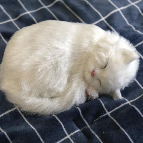 숨쉬는 인형 고양이 터키쉬앙고라 상품이미지