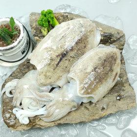 산지직송  갑오징어 1kg(소_급냉) 라면용추천