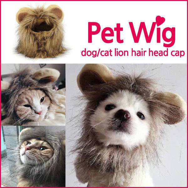 KOCHA 사자머리 가발 애견가발 고양이 강아지 M사이즈 상품이미지