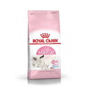 로얄캐닌 고양이사료 베이비캣 10kg