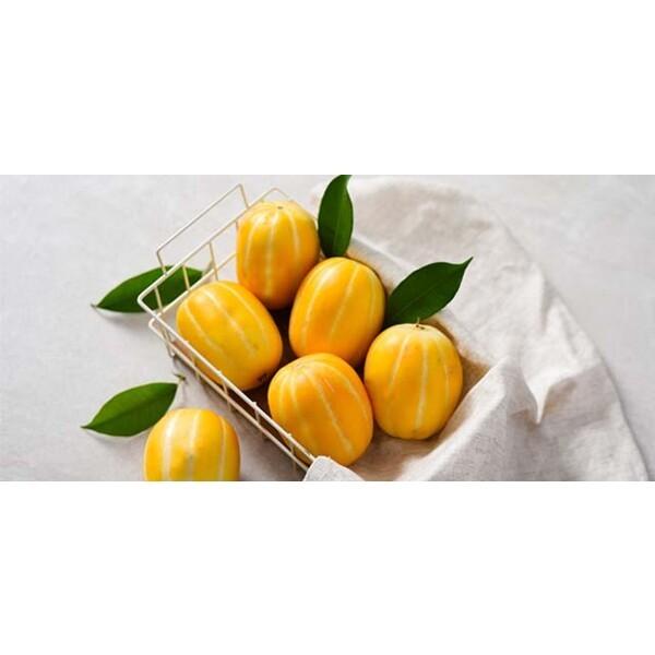 (현대Hmall) 자연맛남  꿀맛남 성주 참외 3kg (로얄과/11 16과) 상품이미지