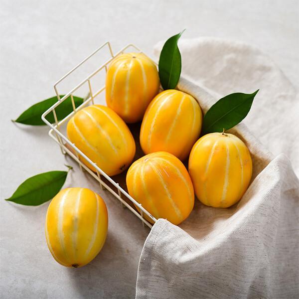 (현대Hmall) 자연맛남  꿀맛남 성주 참외 5kg (로얄과/15 24과) 상품이미지