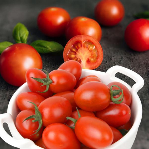 우리네농산물 대추방울토마토 2kg/4번과 상품이미지