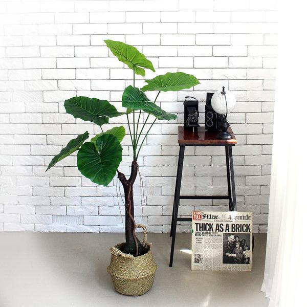 인조나무 조화나무 실내조경 라인 알로카시아 110cm 상품이미지