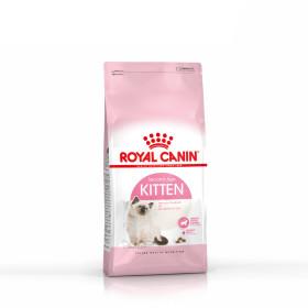 로얄캐닌 고양이사료 키튼 4kg