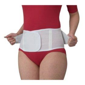 신세이정품 코르셋 허리보호대 ML  허리복대 남녀공용