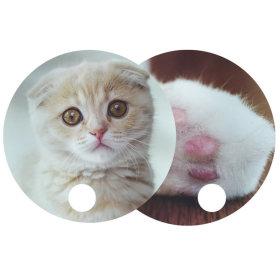 고양이 발바닥 부채 / 여름 물놀이 용품 자외선차단