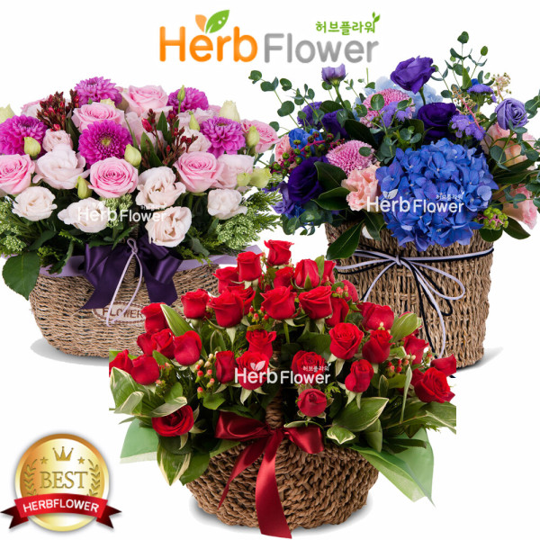 예쁜장미꽃바구니 생일선물 장미꽃도매 당일꽃배달 상품이미지