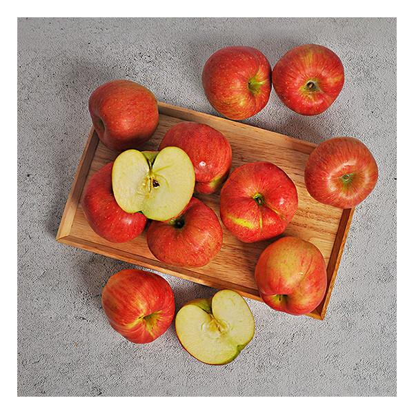 누리원  맛있는 사과 실중량 5kg 가정용 상품이미지