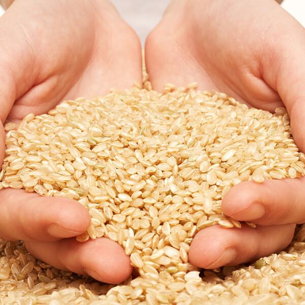 (현대Hmall) 쌀집총각  국내산 현미1kg 상품이미지