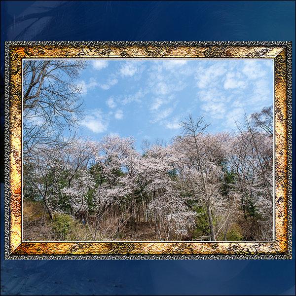 A685-4/액자/사진액자/풍경사진/벚꽃사진/벽걸이액자 상품이미지