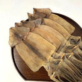 울돌목 동해안 마른 오징어 특大 5미(500g 내외)