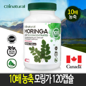 10배 고농축 모링가 120야채캡슐 캐나다 생산 직발송