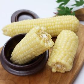 (햇살농장) 찰옥수수 15통(미백찰) 정선 맛과식감 좋음