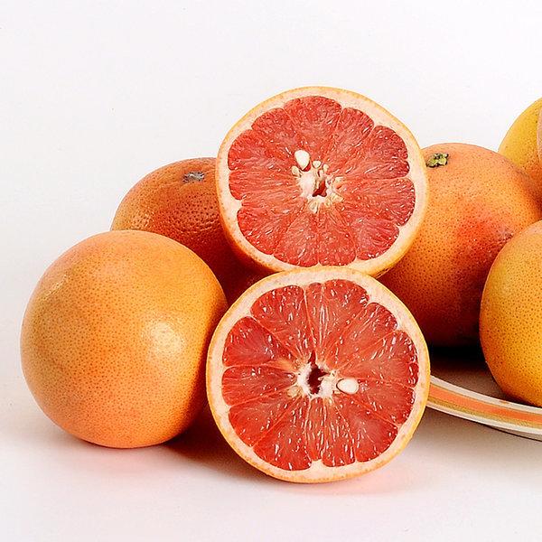 자몽/한라봉/오렌지 레드자몽 대과30과 약 10kg 상품이미지