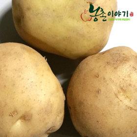 감자 포근포근햇감자 10kg(특/찜.반찬용) 9900원