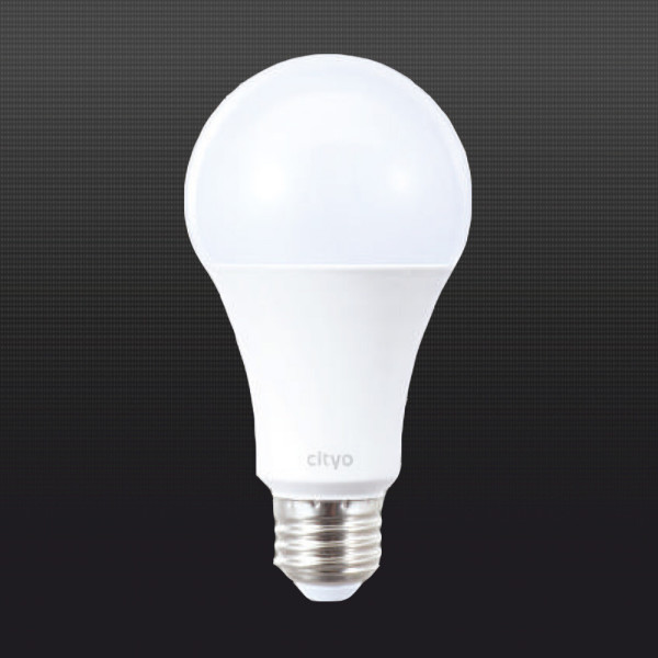 LED전구 LED형광등 12W 벌브 주광색 전구색 상품이미지