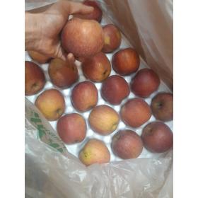 당도높은사과(흠과)10kg29000원