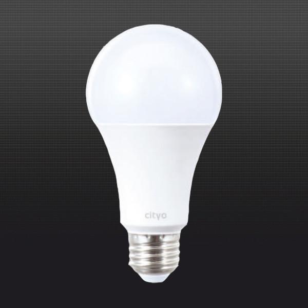 LED전구 LED형광등 15W 벌브 주광색 전구색 상품이미지