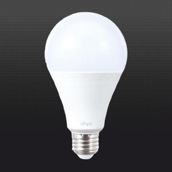 LED전구 LED형광등 20W 벌브 주광색 전구색 상품이미지