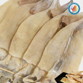마른오징어 특대5마리 500g 신선한 당일바리 오징어