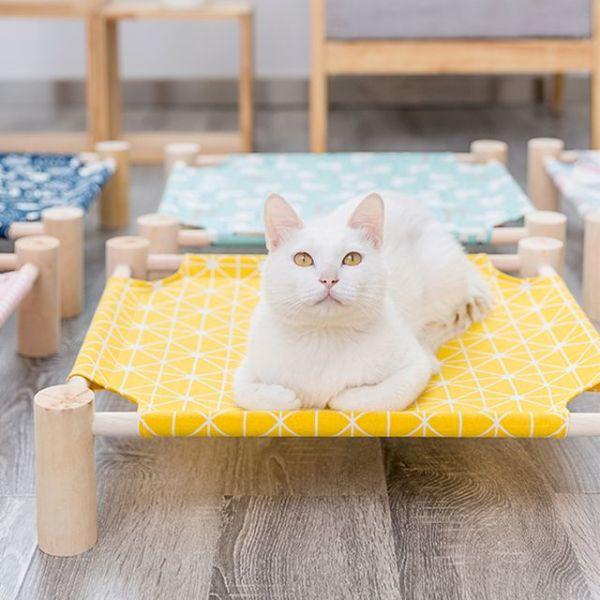 봉봉펫닷컴 고양이 사각 원목 해먹 상품이미지