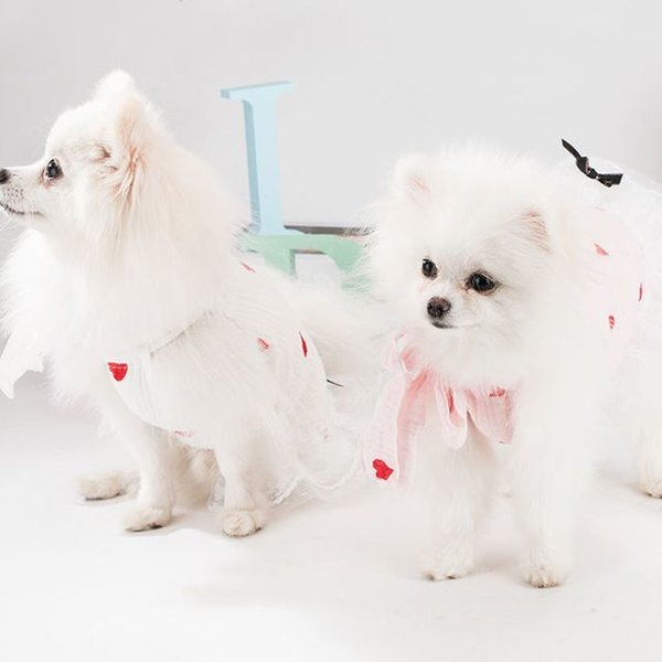 봉봉펫닷컴 강아지 러블리 레이스 하트 드레스 상품이미지
