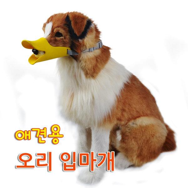 애견용 오리 입마개/강아지 입마개/짖음방지 입마개 상품이미지