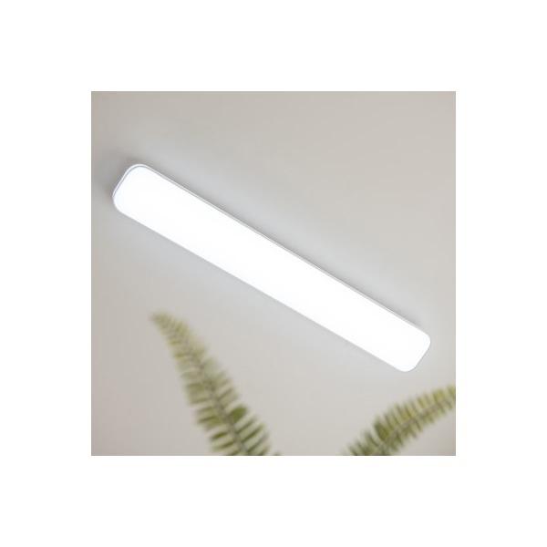 LED 닉스 주방등 60W 상품이미지