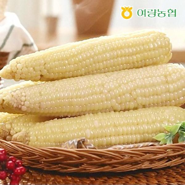 여량농협  정선아리랑 냉동 찰 옥수수 50개(18cm내외)/농협품질인증 상품이미지