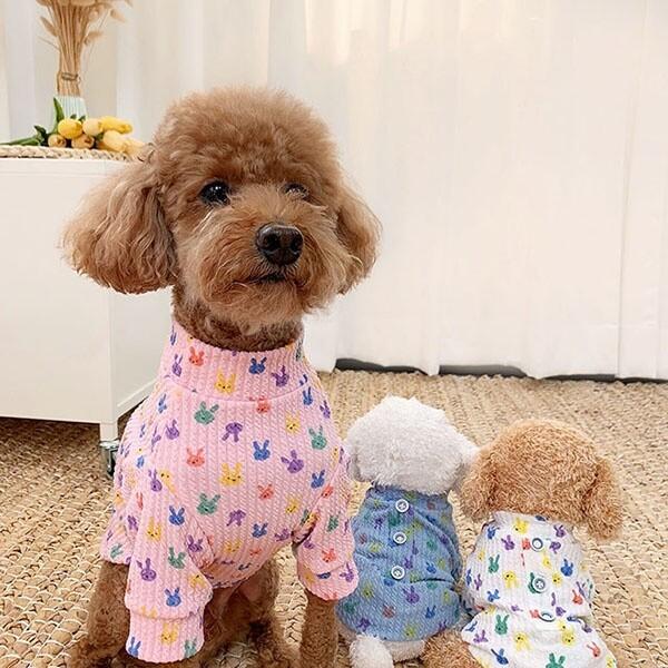 대구백화점 II관   유앤펫 새콤달콤 토끼 티셔츠 S~2XL (3COLOR) 상품이미지