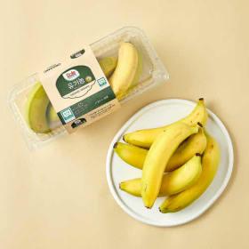 돌 유기농 바나나 500G(팩)