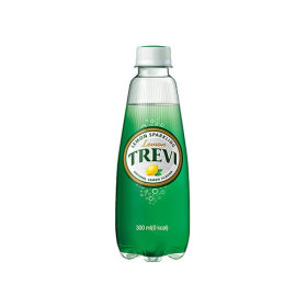 트레비 레몬 300ml  40pet (2박스)