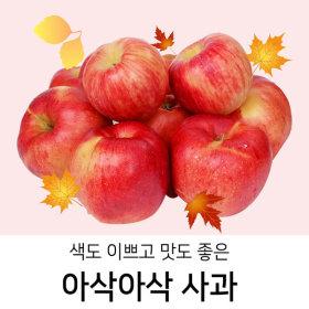 색도 맛도 좋은 아삭아삭~ 가정용 흠사과 (중 3kg)