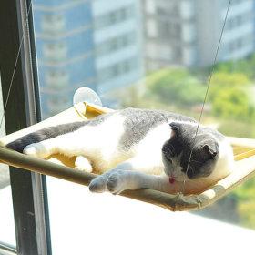 고양이 일광욕 창밖구경 낮잠 윈도우 창문 해먹