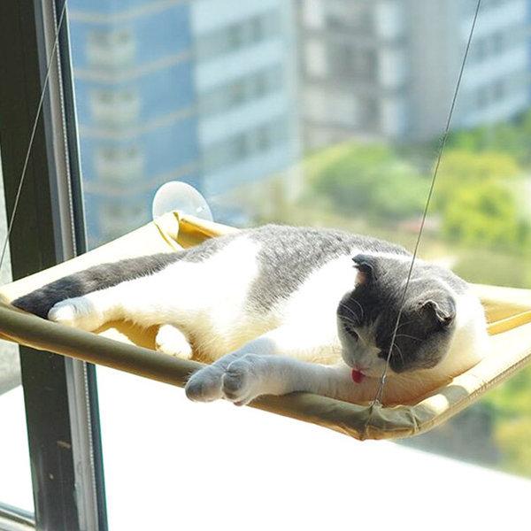 고양이 낮잠 일광욕 스트레스해소 윈도우 창문 침대 상품이미지