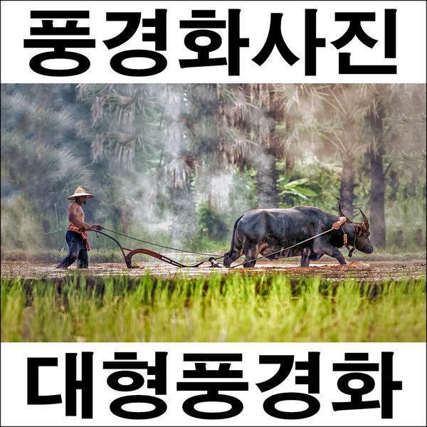 C138/인테리어소품/풍경사진/풍경화/벽장식/농부사진 상품이미지