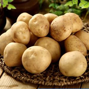 (최저옵션 6800원)18년 햇 감자 5kg